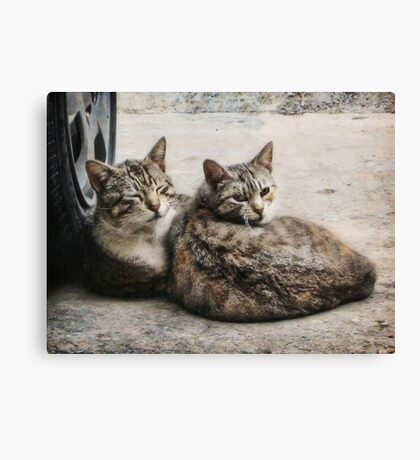 Don't look now, honey. But somebody's watching us... Canvas Print