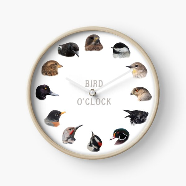 """Bird O'clock"" Clock"