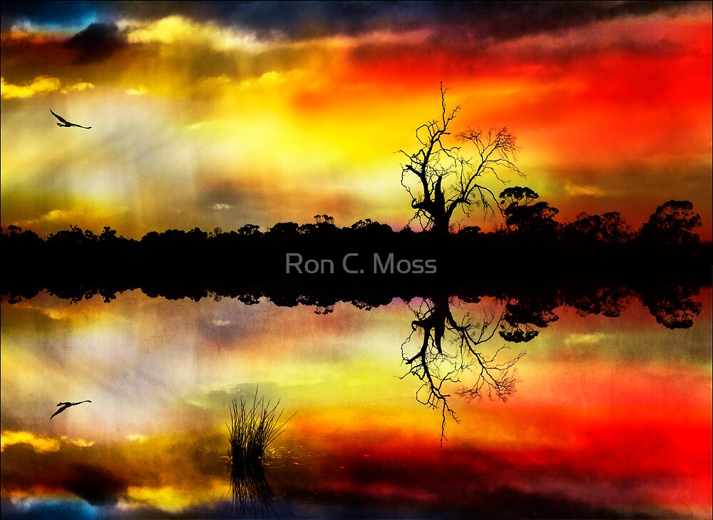 Into The Storm 2 by Ron C. Moss
