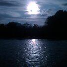 The Dark Night by almulcahy