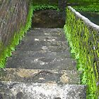 Old-Stairs View  by BasantSoni