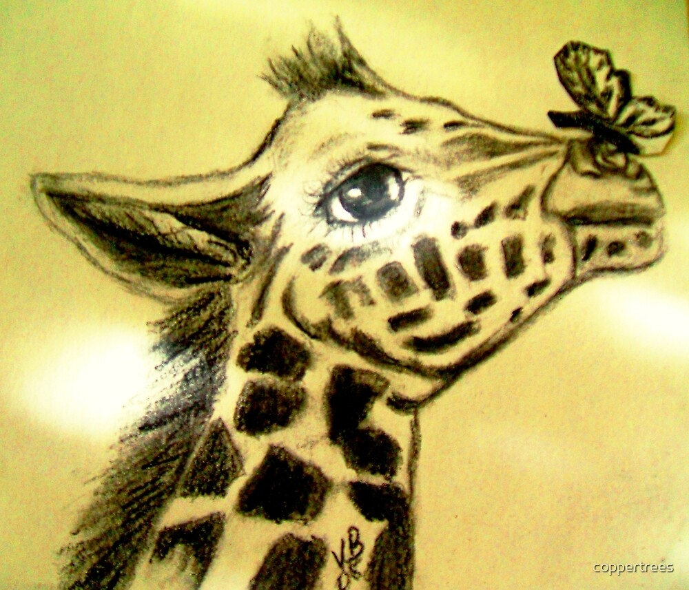 Quot Baby Giraffe With Butterfly Quot By Coppertrees Redbubble