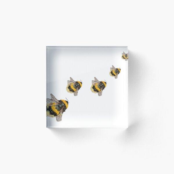 Bees Acrylic Block