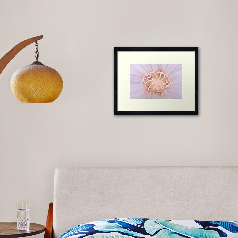 Spiral #2 Framed Art Print