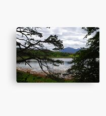 View from Inverewe Gardens Canvas Print