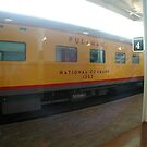Union Pacific Railroad Pullman Car - Omaha by Jack McCabe