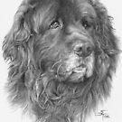 A4 Portrait Commission - Cobbler by Sami Thorpe