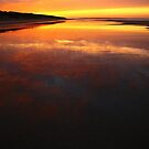 bunurong sunrise. coastal victoria, australia by tim buckley | bodhiimages