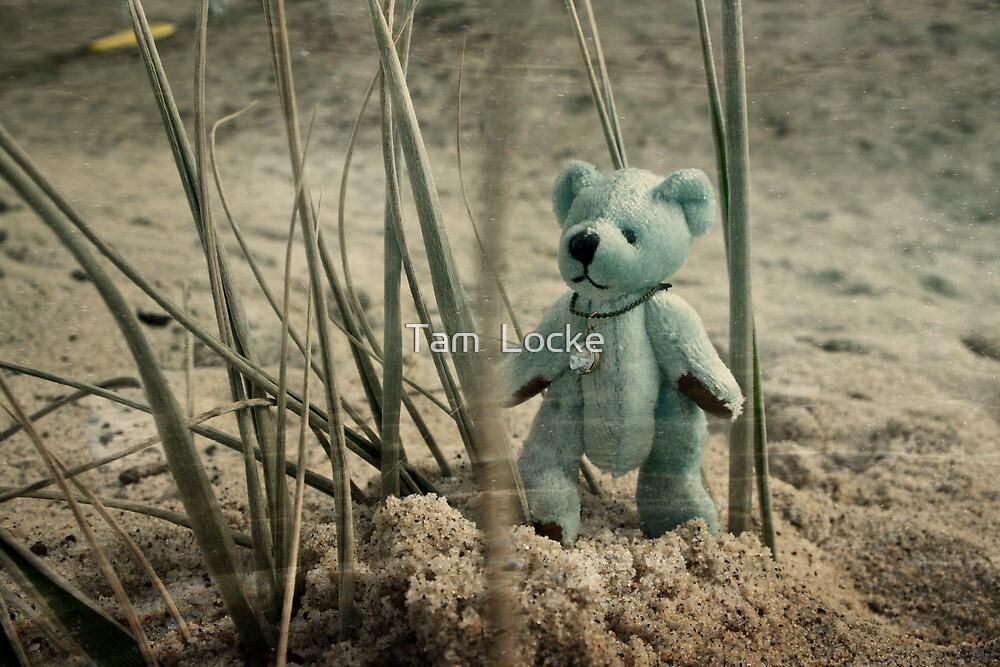 Little Blue iii by Tam  Locke