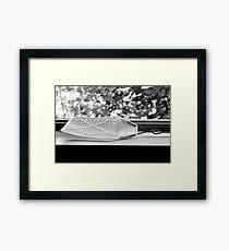 Fly Swatter Framed Print