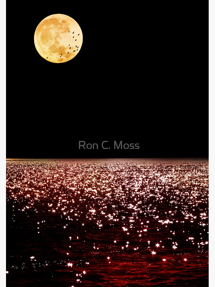 Sea Moon by ronmoss