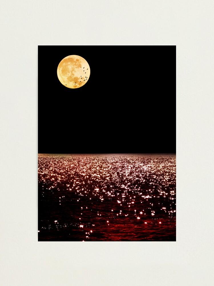 Alternate view of Sea Moon Photographic Print