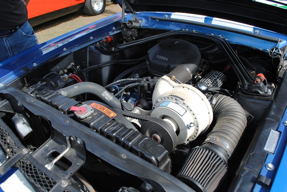 Shelby Supercharger by gordonspics