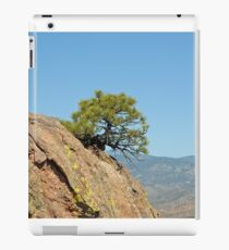 Shrub and Rock at Canon City  iPad Case/Skin