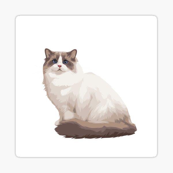 Ragdoll kitty Blue bicolor Sticker