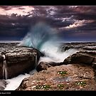 Whale Beach  by JayDaley