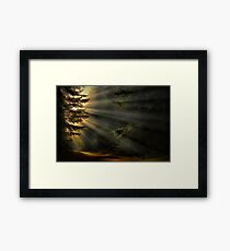 Road To His Glory Framed Print