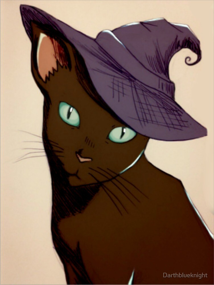 Cat in Witch's hat! by Darthblueknight