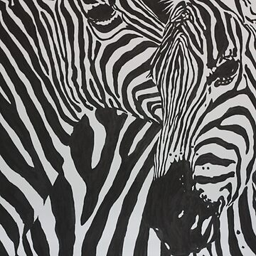 Zebras by wendish