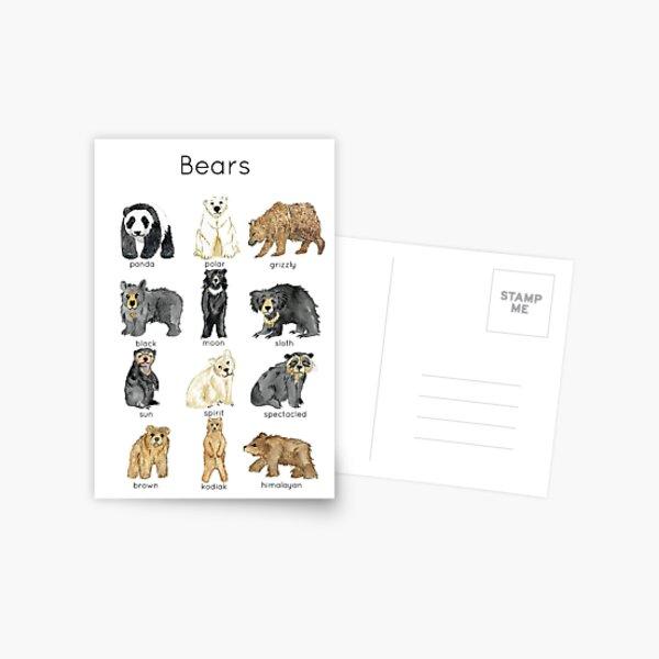 Bears ID Postcard