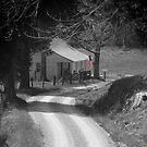 Backroad Flag by © Joe  Beasley IPA