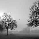 Winter Chill by Jessica Loftus