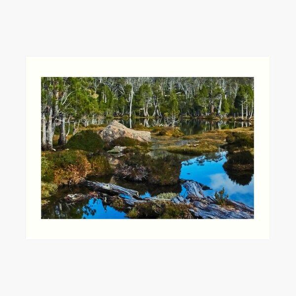The Pool of Bethesda, Tasmania Art Print