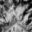BLACK AND WHITE 1 by Stanislav Podusenko
