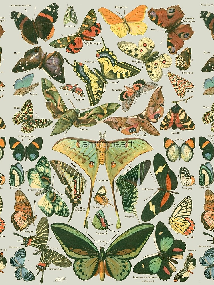 Butterfly Pattern by antiqueart