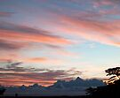 Detail of sunrise 16 August 2011 by Odille Esmonde-Morgan