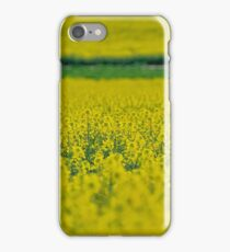 Canola iPhone Case/Skin