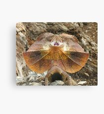 Frilled not to be Grilled Lizard Canvas Print