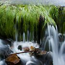 Flowing Water by Stepan Lorenc