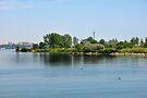 Humber Bay Park  Toronto by Elaine Manley
