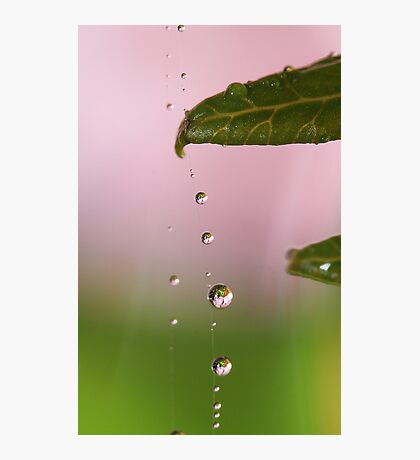 Droplets Down The Line Photographic Print