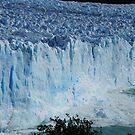 Perito Merino glacier calving  by Braedene