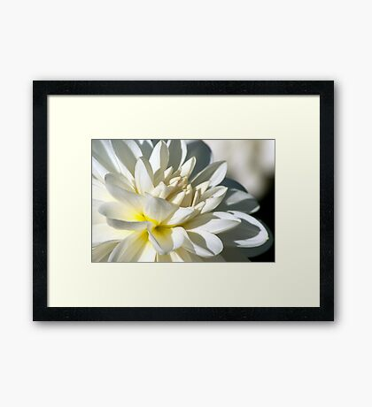 Love is the beauty of the soul Framed Print