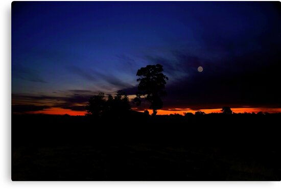Silverdale Sunset Collection (8) by Josette Halls
