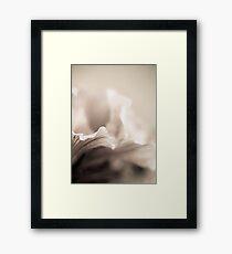 Soft Framed Print