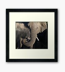 Nothing A Like Dirt Bath Framed Print