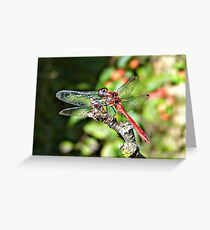 Cute Dragonfly Greeting Card