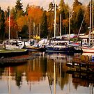 Stanley Park Harbour in the Fall by Rae Tucker