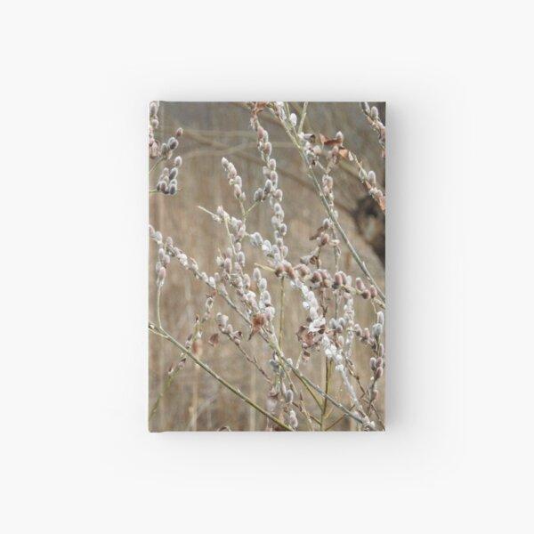 Winter Light Hardcover Journal
