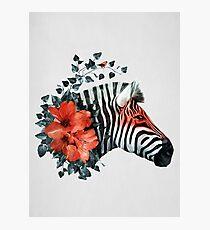 Untamed Photographic Print