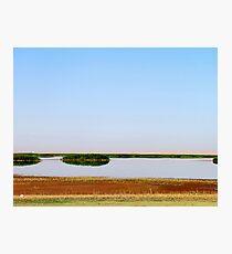 The Lake Bushes Photographic Print