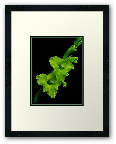 GREEN FLOWER by RoseMarie747