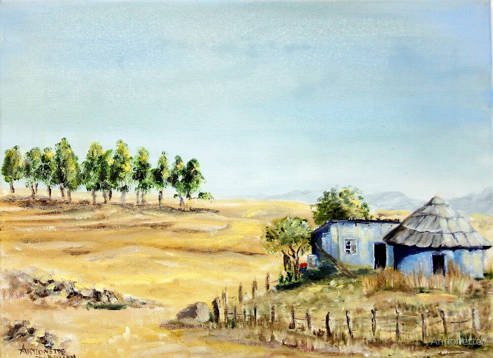 Free State Landscape by Antionette
