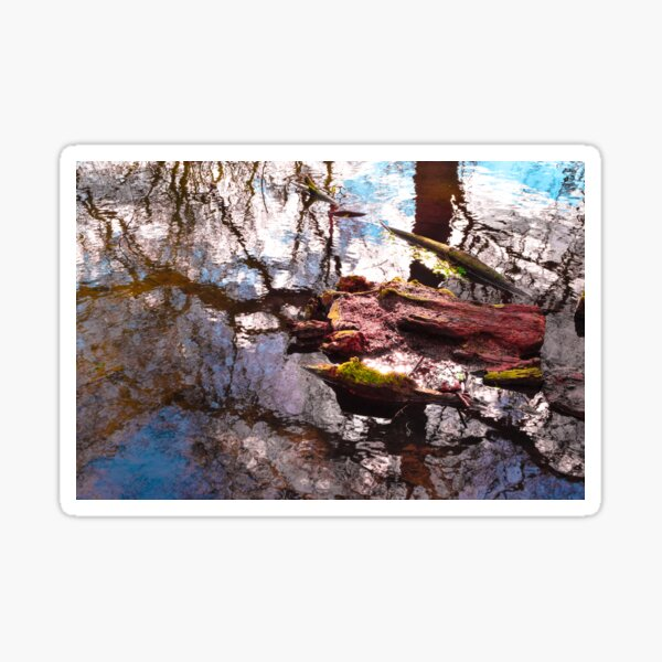 Natural Destruction Sticker