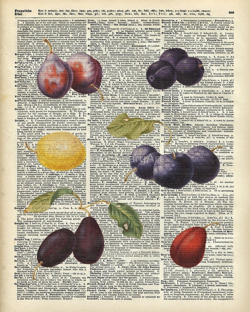 Plums vintage illustration Over a Old Dictionary Page by DictionaryArt
