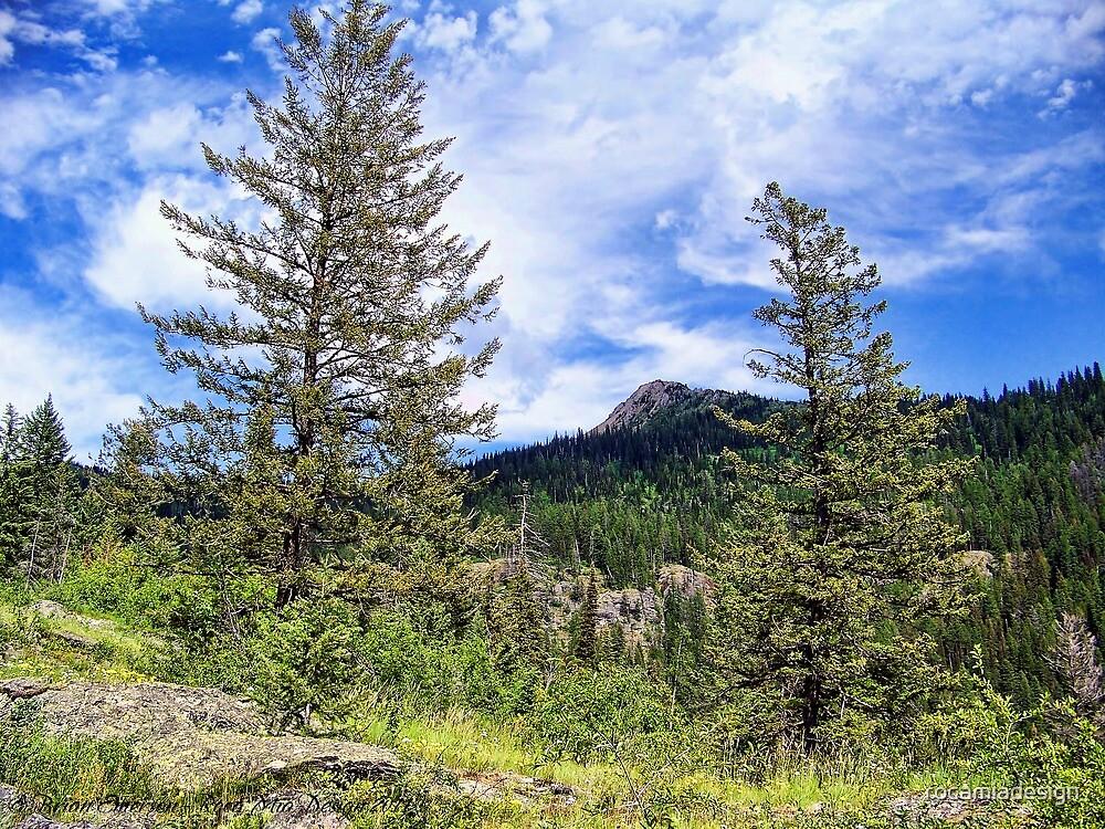 Hall Peak (Bob Marshall Wilderness, Montana, USA) by rocamiadesign